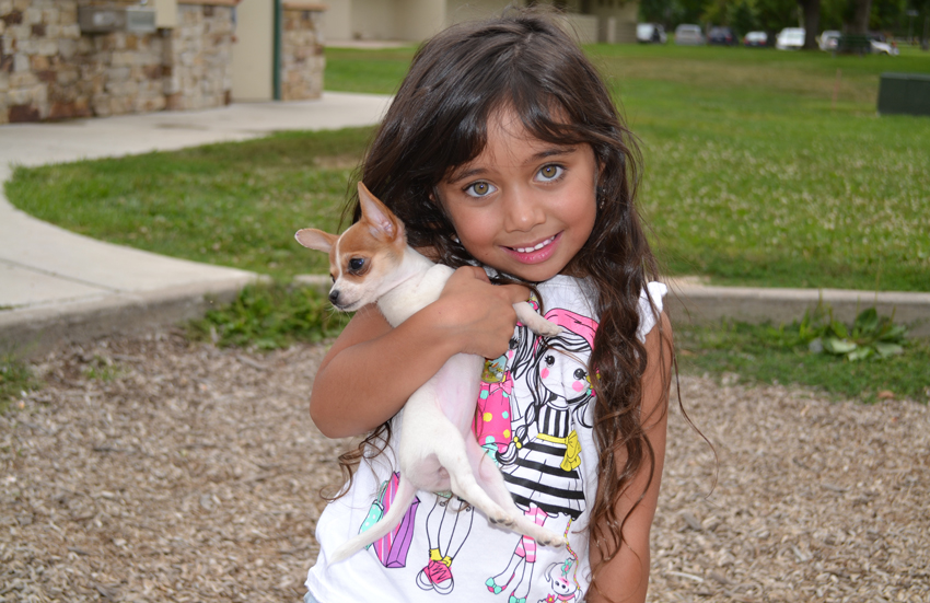 A girl smiles while holding her puppy at Pueblo's Mineral Palace Park in July 2015. During National Preparedness Month this September, pet owners are being reminded to make advance plans for pet care as part of their family preparedness.